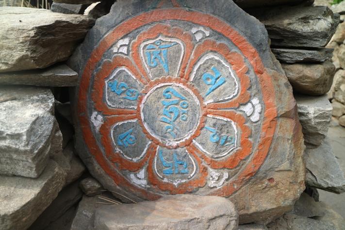 Visitem els cafetals salvatges del Nord de Nepal